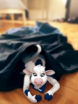 bandanna blackshirtboy blue_eyes bovine cattle clothing female hooves lactaid lactaid_cow mammal shrinking solo transformation wide_hips  Rating: Safe Score: 4 User: tartcore Date: September 21, 2015