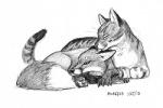 2010 ambiguous_gender canine cat couple cute duo feline feral fox greyscale mammal monochrome pencil_(artwork) scott_ruggels traditional_media_(artwork)  Rating: Safe Score: 1 User: Kiruki Date: April 16, 2010