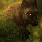 ambiguous_gender black_nose brown_fur canine detailed_background forest fur lhuin mammal nature outside pine_tree scenery solo tree were werewolf wolf woodRating: SafeScore: 12User: SnowWolfDate: July 18, 2011