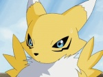 animated anthro blinking blue_background blue_eyes canine chest_tuft digimon female fox fur mammal portrait renamon simple_background solo sweat sweatdrop tuft white_fur yellow_fur  Rating: Safe Score: 20 User: RenaKunisaki Date: August 19, 2012
