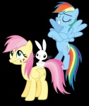 alternate_hairstyle angel_(mlp) cutie_mark equine feathered_wings feathers female feral flamemordecaifan_(artist) fluttershy_(mlp) friendship_is_magic fur group hair lagomorph mammal multicolored_hair my_little_pony pegasus pink_hair rabbit rainbow_dash_(mlp) rainbow_hair smile white_fur wings yellow_feathersRating: SafeScore: -1User: QuetzalcoatlColoradoDate: March 29, 2017