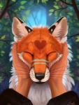 <3 ambiguous_gender black_fur black_nose canine day detailed detailed_background duo eyes_closed feral first_person_view fox fur hi_res humanoid_hands mammal orange_fur outside paws plant sky solo_focus whiskers white_fur yakovlev-vadRating: SafeScore: 27User: MillcoreDate: July 21, 2016