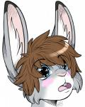 anthro blue_eyes blush brown_hair buckteeth hair headshot_portrait hi_res inner_ear_fluff lagomorph logitech male mammal open_mouth portrait rabbit saaracullen solo teeth  Rating: Safe Score: 28 User: logitech Date: March 23, 2014