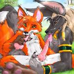 """animal_genitalia anthro anubian_jackal anubis ball_fondling balls canine cum cum_in_mouth cum_inside deity duo egyptian erection fondling fox fur hindpaw jackal male male/male mammal nude oral outside paws penis sex tongue tongue_out zen  Rating: Explicit Score: 8 User: webreakn Date: April 21, 2015"""""""