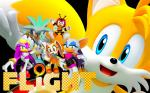 anthro bat canine charmy_bee cream_the_rabbit female fox group hedgehog male mammal miles_prower rouge_the_bat sega silver_the_hedgehog sonic_(series) sonic_riders wave_the_swallow   Rating: Safe  Score: 2  User: Rad_Dudesman  Date: December 31, 2014
