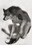 akreon ambiguous_gender canine feral fur grey_fur mixed_media paws pencil_(art) solo traditional_media watercolor_(art) wolf   Rating: Safe  Score: 21  User: diamondwolf6  Date: December 30, 2011
