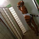 big_butt breasts butt cellphone clothing edit feline female holding_phone iphone kung_fu_panda mammal master_tigress oystercatcher7 phone photo_manipulation photomorph selfie side_boob stripes swimsuit tiger   Rating: Questionable  Score: 10  User: oystercatcher23  Date: November 05, 2014