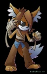 2014 anthro bandage black_eyes black_sclera canine fan_character fennec fox hair kaithephaux long_hair looking_at_viewer male mammal solo sonic_(series)