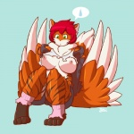 blazbaros breasts canine chest_tuft clothing embarrassed female fox fur green_eyes hair hoodie mammal orange_fur red_hair shorts socks solo sweat sweatdrop torn_clothing tuft wings   Rating: Questionable  Score: 4  User: ShimaSoul  Date: May 23, 2015