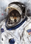 2012 american_flag canine clothing flag looking_at_viewer male nasa_logo racoonwolf solo spacesuit wolf   Rating: Safe  Score: 15  User: Hardstyle_Chris  Date: January 16, 2013