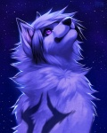 2013 ambiguous_gender anthro canine cool_colors digital_media_(artwork) falvie looking_up mammal night outside sky solo star wolf