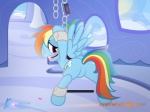 2016 ball_gag bdsm blue_feathers blue_fur bondage bound chain cloud cutie_mark equine feathered_wings feathers female feral friendship_is_magic fur gag hair inside looking_at_viewer looking_back mammal multicolored_hair my_little_pony nightmaremoons patreon pegasus rainbow_dash_(mlp) rainbow_hair red_eyes sky solo spread_legs spread_wings spreader_bar spreading wings  Rating: Questionable Score: 8 User: ConsciousDonkey Date: February 27, 2016