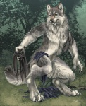anthro canine clothing digitigrade forest fur grey_fur lykanos male mammal nude post_transformation sabretoothed_ermine solo torn_clothing transformation tree were werewolf wolf yellow_eyes   Rating: Questionable  Score: 11  User: Arkham_Horror  Date: May 19, 2015