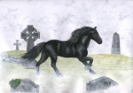 2007 ambiguous_gender black_fur colored_pencil_(artwork) detailed_background eosfoxx equine feral fur grass grave graveyard horse mammal mane outside quadruped side_view solo traditional_media_(artwork)
