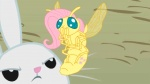 angel_(mlp) animated equine female feral fluttershy_(mlp) fly friendship_is_magic horse my_little_pony pony unknown_artist   Rating: Safe  Score: 3  User: lookyloo  Date: June 24, 2011
