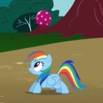 animated ball blue_fur bouncing equine female feral friendship_is_magic fur mammal my_little_pony pegasus rainbow_dash_(mlp) solo unknown_artist wings   Rating: Safe  Score: 4  User: prince_blueblood  Date: July 14, 2011