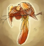 2011 ambiguous_gender avian bird dirtiran feathered_wings feathers feral orange_feathers solo wings