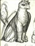 arkomeda avian female feral gryphon sketch wings   Rating: Safe  Score: 2  User: Arkomeda  Date: February 27, 2015