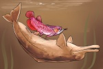 ambiguous_gender animal_genitalia cetacean cetacean_penis cloaca cloacal_penetration convicted-clown dolphin feral feral_on_feral fish interspecies larger_male male male/ambiguous mammal marine penetration penis size_difference underwater water  Rating: Explicit Score: 6 User: chdgs Date: August 05, 2015