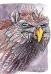 ambiguous_gender avian beak feral gryphon ironfeathers mixed_media pencil_(artwork) reaction_image solo traditional_media_(artwork) watercolor_(artwork) yellow_eyes  Rating: Safe Score: 25 User: FatherOfGray Date: May 13, 2014