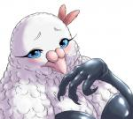 avian bird blue_eyes blush bubonikku clothed clothing dove eyelashes feathers female gloves looking_at_viewer simple_background solo white_background  Rating: Safe Score: 2 User: chdgs Date: October 04, 2015