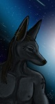 2013 anubian_jackal anubis bodypaint bust canine cryme_the_cheetah deity hair jackal long_hair male nipples piercing realistic shaded solo space stars   Rating: Safe  Score: 5  User: KhraymTheCheetah  Date: July 18, 2013