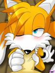 amatsucat_(artist) canine fox looking_at_viewer male male/male mammal miles_prower one_eye_closed oral penis sega sonic_(series)   Rating: Explicit  Score: 7  User: GLF09  Date: February 20, 2015