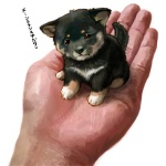 1:1 ambiguous_gender canid canine canis chobi cub disembodied_hand domestic_dog duo feral holding_character human mammal micro shiba_inu size_difference spitz toriny young