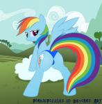 butt equine female feral friendship_is_magic horse looking_at_viewer mammal my_little_pony panties pegasus pinkiepizzles pony rainbow_dash_(mlp) smile underwear wings   Rating: Questionable  Score: 11  User: Robinebra  Date: April 13, 2014