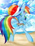 beach beach_ball berndem-bones bikini bipedal blue_fur bra clothing cloud cutie_mark equine friendship_is_magic fur hair horse looking_back mammal multicolored_hair my_little_pony open_mouth outside panties pony rainbow_dash_(mlp) rainbow_hair seaside smile swimsuit teeth underwear wings   Rating: Safe  Score: 0  User: EmoCat  Date: April 25, 2015