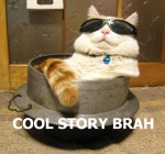 :3 ambiguous_gender bell cat collar cool_story_bro deal_with_it english_text eyewear feline feral humor image_macro lolcat mammal reaction_image real relaxing solo story sunglasses text unknown_artist  Rating: Safe Score: 27 User: Blaziken Date: October 08, 2010