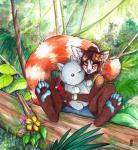 2015 brown_fur brown_hair female flower flower_in_hair fur hair hindpaw mammal outside paws plant plushie rainforest red_panda solo tanutanuki  Rating: Safe Score: 2 User: TonyLemur Date: October 07, 2015