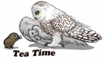 ambiguous_gender avian bird black_eyes brown_fur claws cup duo feathers feral fur lemming mammal octobertiger owl plain_background rodent snowy_owl steam wings yellow_eyes  Rating: Safe Score: 9 User: corgi_bread Date: November 10, 2012""