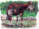 2006 ambiguous_gender creek eattoast feral grass hooves looking_at_viewer mammal marker_(artwork) mixed_media okapi pen_(artwork) rock signature solo standing traditional_media_(artwork) tree water wood  Rating: Safe Score: 0 User: titanmelon Date: March 01, 2012