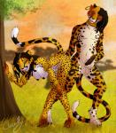anthro balls bent_over black_penis breasts cloudy_kitty dreadlocks duo ear_piercing erection feline female hair humanoid_penis jewelry male mammal nude penis piercing ring scar tribal   Rating: Explicit  Score: 8  User: Munkelzahn  Date: May 13, 2015