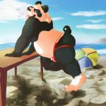 2013 anthro ball beach beach_ball bear blue_eyes butt clothing fur hi_res jockstrap looking_at_viewer male mammal moogle_(character) musclegut outside panda rumash sand seaside sky slightly_chubby solo table underwear  Rating: Questionable Score: 10 User: Moogle Date: March 28, 2014