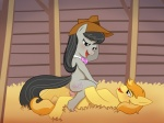 2012 animal_genitalia animal_penis battle_angel black_hair blush braeburn_(mlp) cowboy_hat cowgirl_position cutie_mark duo earth_pony equine equine_penis female friendship_is_magic green_eyes hair hat hi_res horse long_hair male male/female mammal my_little_pony octavia_(mlp) on_top open_mouth orgasm penetration penis pony purple_eyes sex straddling tongue  Rating: Explicit Score: 18 User: Metal-X Date: October 01, 2012