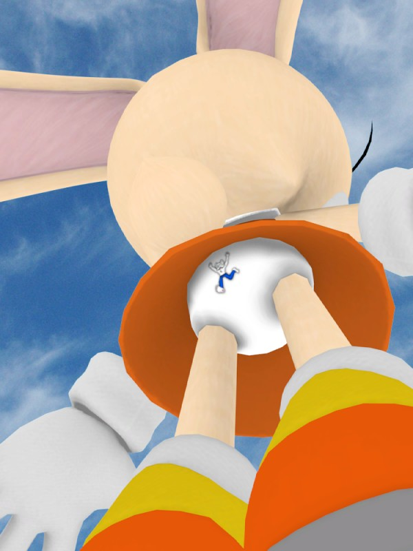 Here is a 3D shot of Cream the Rabbit's Panties Cream's 3D panty Shot.