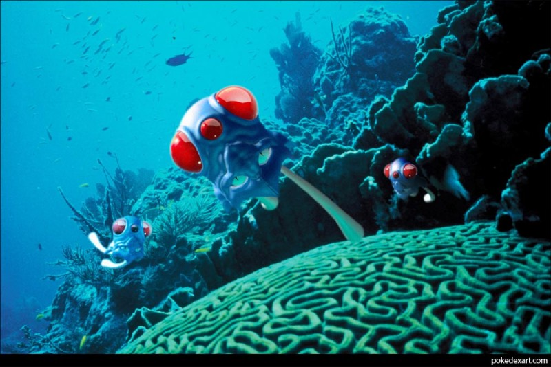 e621 ambiguous_gender coral_reef fish marine nintendo pokémon pokémon_(species) sea tentacool underwater unknown_artist video_games water