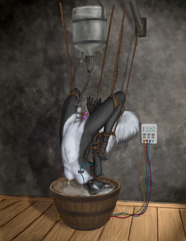 Bondage Breasts Electricity 16