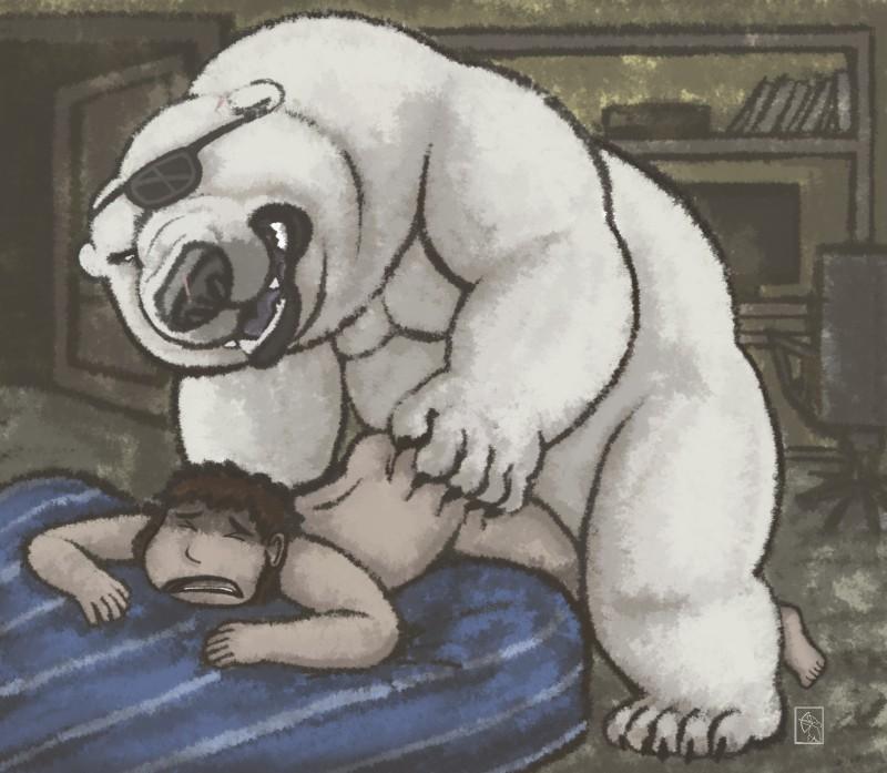 Секс человека с медведем