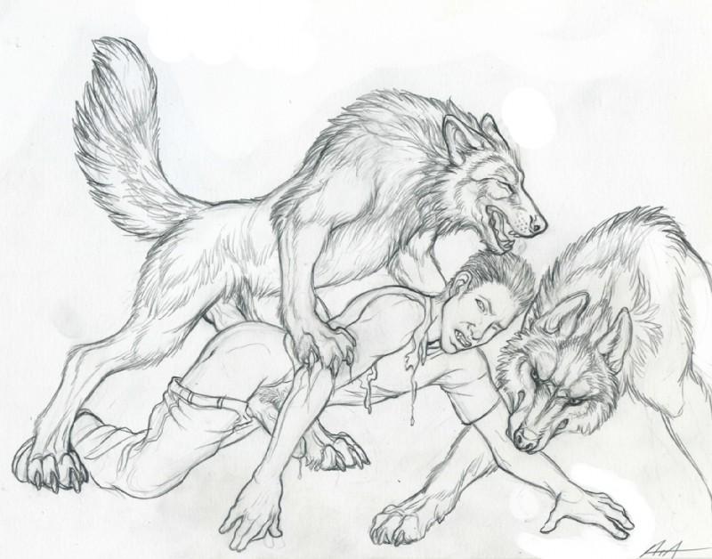 Gay bestiality drawings